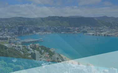 View of Wellington city