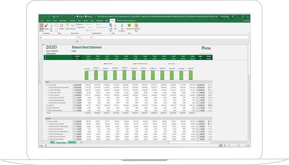 Screenshot of Vena Financial Reporting